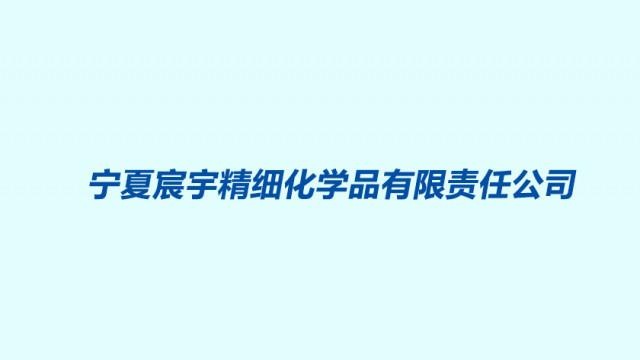 宁夏宸宇精细化学品有限责任公司